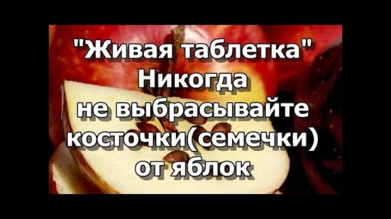 Живая таблетка - Никогда не выбрасывайте косточки(семечки) от яблок