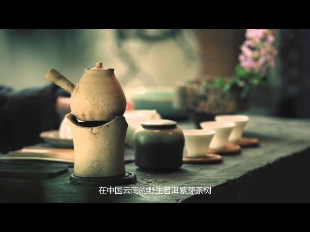 這麼稀有的紫茶,你喝過嗎?