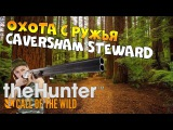 theHunter call of the wild #13 - Охота с ружья CAVERSHAM STEWARD