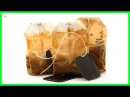 This Is Why You Should Not Throw Away The Used Tea Bags | Best Home Remedies
