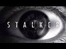S T A L K E R 1,2 серии2фантастика,детектив, приключенияШОК зона Чернобыля