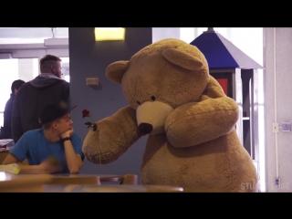 Гигантский плюшевый медведь раздаёт подарки ко Дню святого Валентина