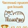"""Частный приют для кошек """"Томасина"""" 43-03-09"""