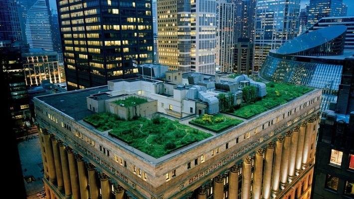 eCfAbVSW4G4 - 11 Красивейших садов на крыше