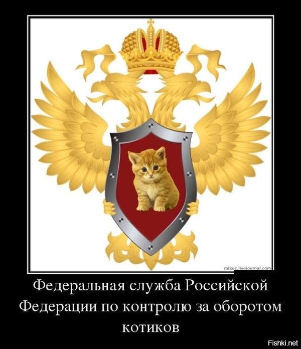 ФС РФ по контролю за оборотом котиков