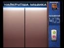 Мобильный киоск QTV (03. 2013) №4