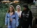Детишки в лесу Сорванцы в лесу (1996) [360]