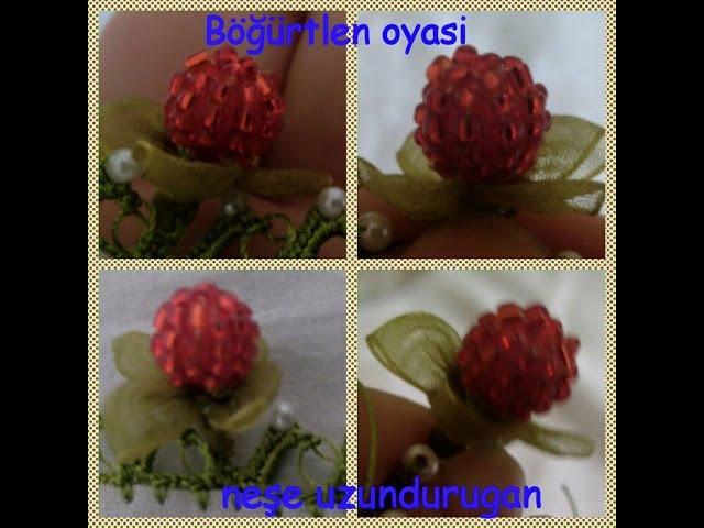 Organze Kurdele oyalarıBÖĞÜRTLEN OYASIForex flower,health flower, summer flower ,holiday flower
