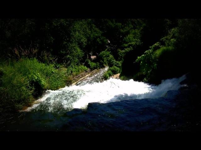 Звуки природы. Живой лес, релаксация музыка, вода, природа, лес, отдых, тихий