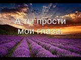 Караоке Дан Балан и Вера Брежнева-Лепестками слёз.