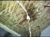 Реакция властей на рухнувший потолок ул.Красноармейская г.Чапаевск