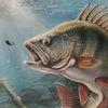fish-fish-fish.ru