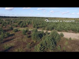 Коттеджный поселок Сказка в Лесу Алеканово Рязань