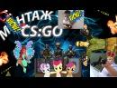 Монтаж CS:GO ( Караоке, Упоротые песни, Винкс, Pony ) Всё что нужно!) ;D
