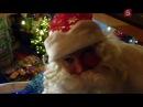 След. «Волшебное царство Деда Мороза»