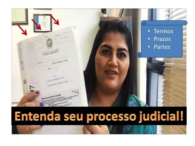 Entenda seu processo judicial Termos prazo partes etc