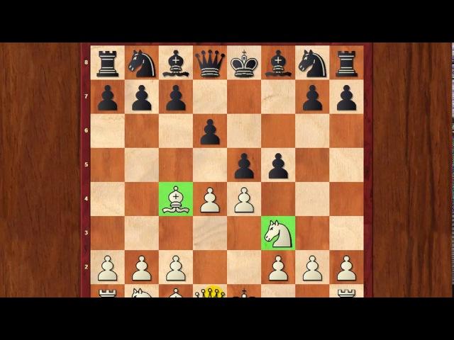 Шахматы для начинающих. Как УНИЧТОЖИТЬ соперника любителя?