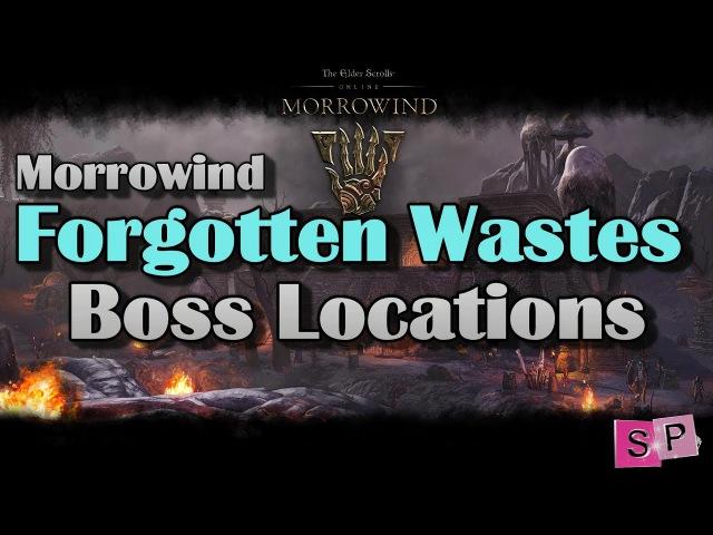 ESO: Forgotten Wastes - Boss Locations