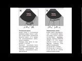 Введение в ультразвуковую анатомию лекция pptx