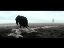 Баллада о детях Б.Медведицы (Муся Тотибадзе) из фильма А.Мельника «Территория», слова Олега Куваева - авт. одноименного романа.