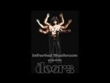 The_Doors_-_Hello_I_Love_You_(Adam_Freeland_Remix)