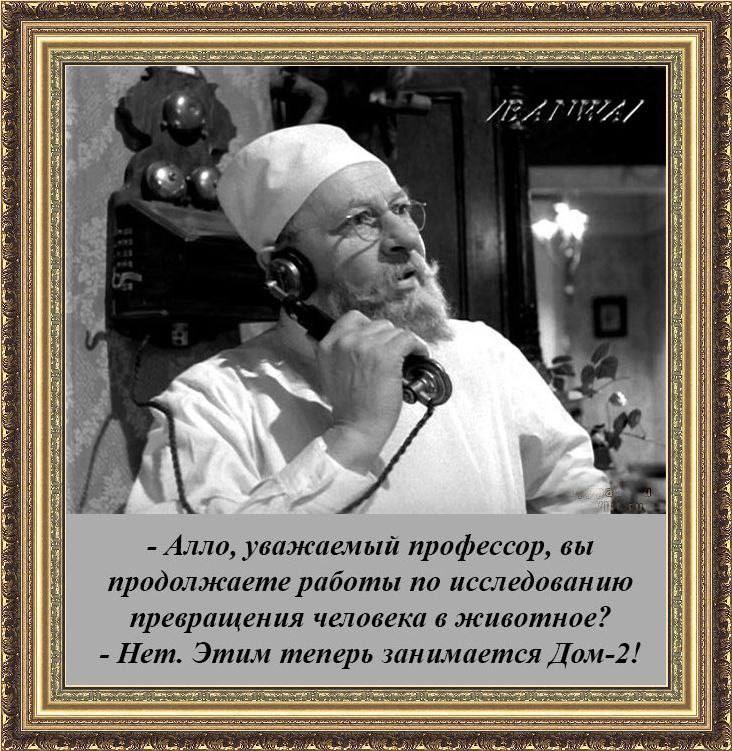https://pp.userapi.com/c837520/v837520292/54156/sbkRIRRXytY.jpg