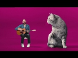 Семён Слепаков - Песня Котозависимость. Реклама Whiskas