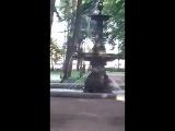 Питер. Соловьёвский сад на ВО