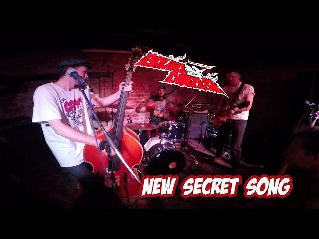 The Squidbillys - New secret song