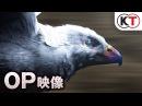 PS4/PS3/PS Vita『ベルセルク無双』オープニングムービー