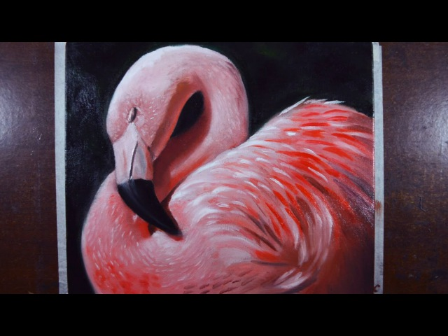 How to paint a Flamingo -- Oil on canvas - Step by step tutorial.