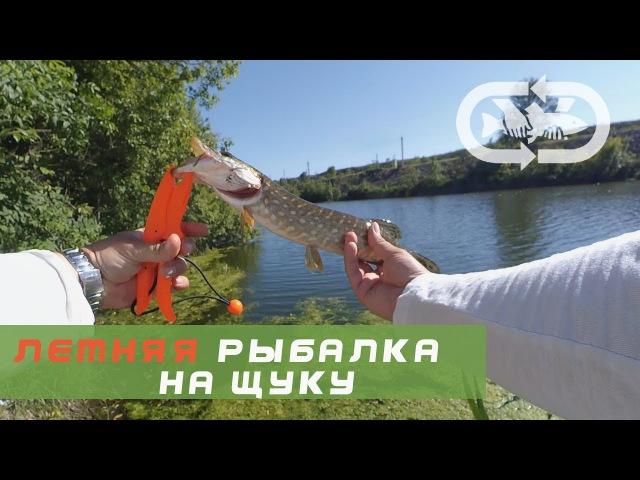 Рыбалка на щуку летом - река Ингулец