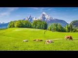 Relaxing Celtic Music  Fantasy Music, Flute Music, Harp Music, Beautiful Music, Relaxing Music ★86