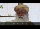 Садхгуру медитация осознанность Садгуру медитация без объяснений