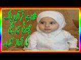 Very Cute Little Girl Tilawat- e -Quran Clip,Very Best Tilawat e Quran video