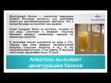 Варвара Веретюк Пагубное воздействие алкоголя Как избежать последствий 10 01