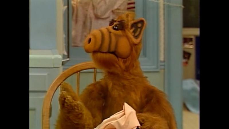 Alf Quote Season 1 Episode 8_Альф и Кейт