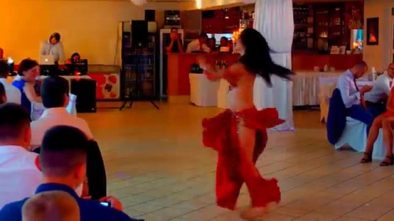 Anora Show Belly Dance on Wedding Slovakia Brušný Tanec 7912