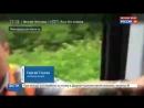Новости на «Россия 24» • Семь поездов застряли между Москвой и Питером из-за упавшего дерева