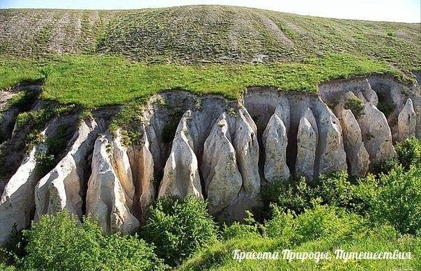 Дивногорье — заповедник и плато в Лискинском районе Воронежской области России.