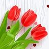 Цветы, букеты, подарки с доставкой по Краснодару