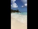 Остров Баунти   2017