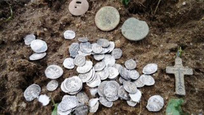 Кошелек Серебра, Чешуя, 2017, Silver Purse, Scale