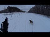 Лыжню! Уступите парню лыжню скорей!