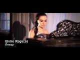 Elvira Ragazza- Птицы
