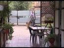 Vozvraschenie Muhtara 2 7 sezon 82 seriya iz 96 2011 XviD SATRip