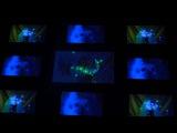 Broken Dolls - Сломанные Куклы  АКТЕРЫ ФРИКИ, ФРИК ШОУ ВИДЕО - ХОРРОР ШОУ - ТЕАТР МАСОК