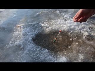 Братская рыбалка)