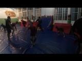Бойцовский Клуб Арена ММА, Греплинг, боевое самбо, Микс-Файт март 2017