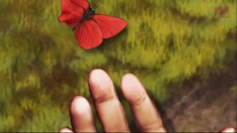 Бабочка стремящаяся из кокона в полёт мудрость
